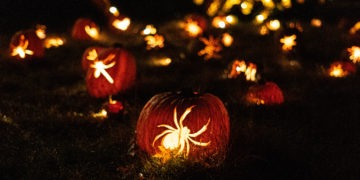 Jack O'lanterns with spiders carved into them sit on a field at night