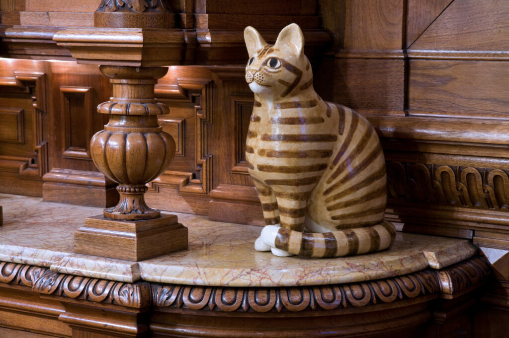 The Cat Cabinet in Amsterdam