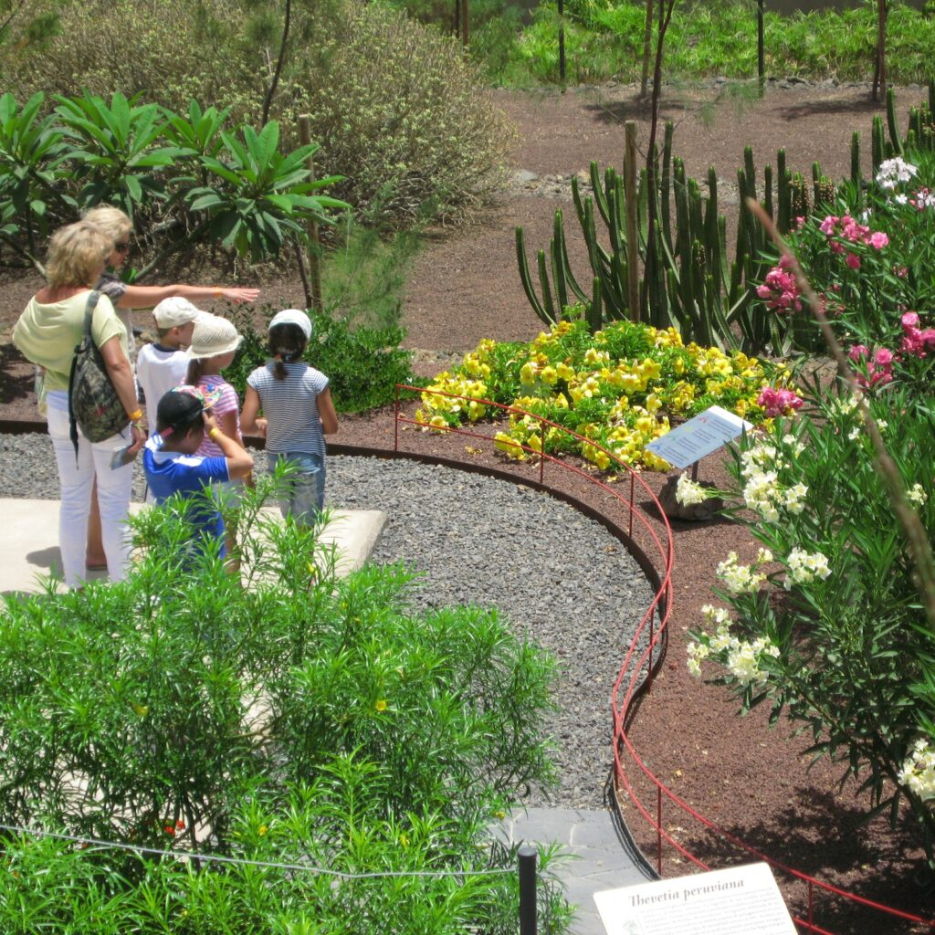 A family visiting the botanical gardens of  Pyramids of Guimar enjoys some sustainable outdoor tourism.