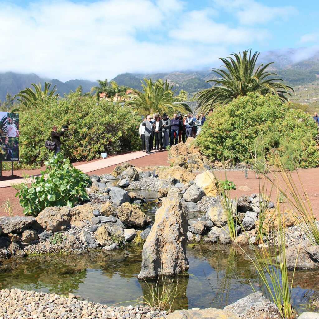 A tour group explores the botanical wonders of the gardens around the  Pyramids of Guimar.