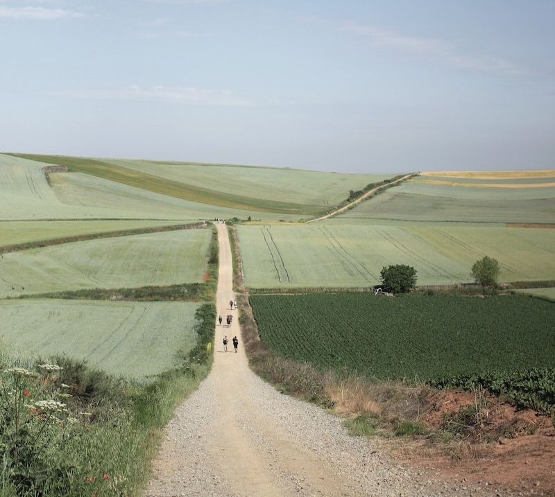 When it comes to things to do in Spain, walking the Camino de Santiago is a must.