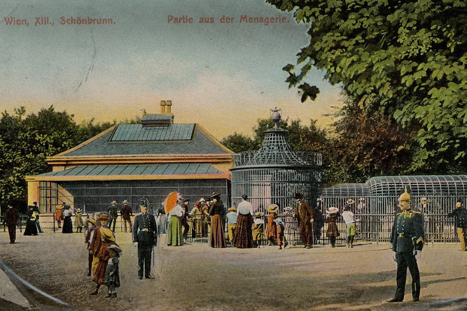 A scene from Tiergarten Schönbrunn, the oldest zoo in the world, in the early 20th century.