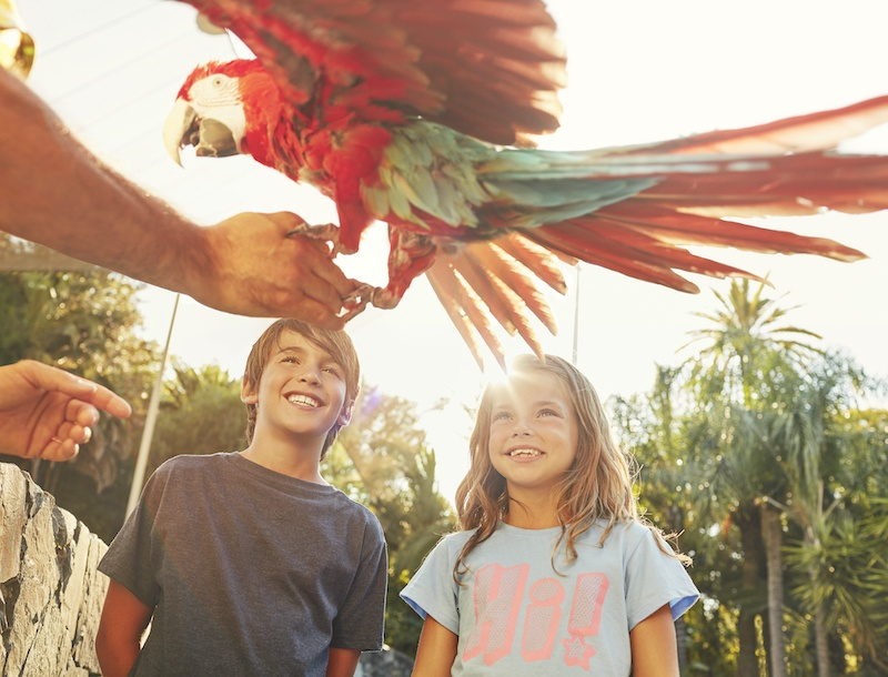 Portaventura holidays are a great thing to do in Spain with kids.