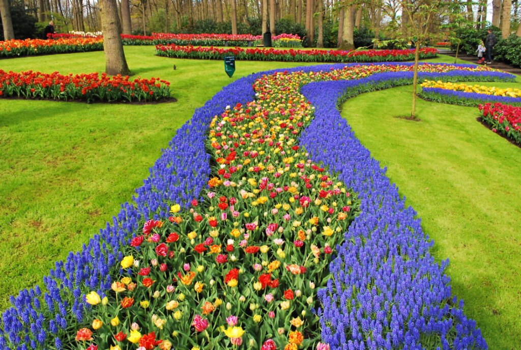 Colourful flower arrangement outside in field of grass.
