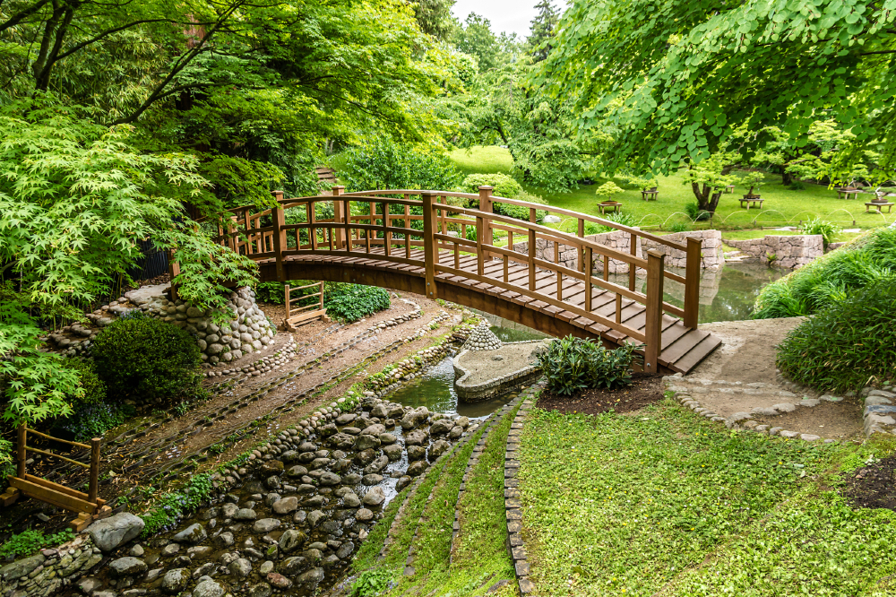 Wooden bridge in Green garden.