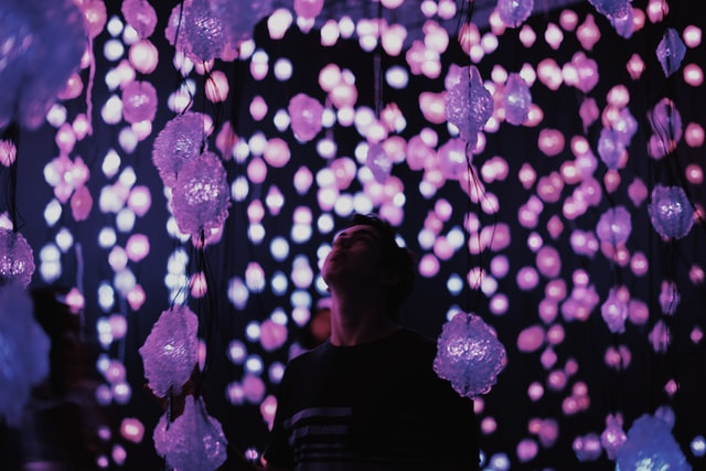 A man stares up at pink hued lightbulbs that drape to the floor