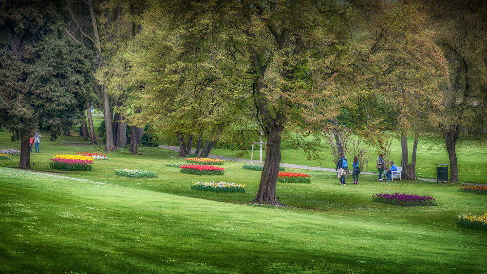 Flowers arranged around lush wooded areas in the most beautiful Italian Garden.
