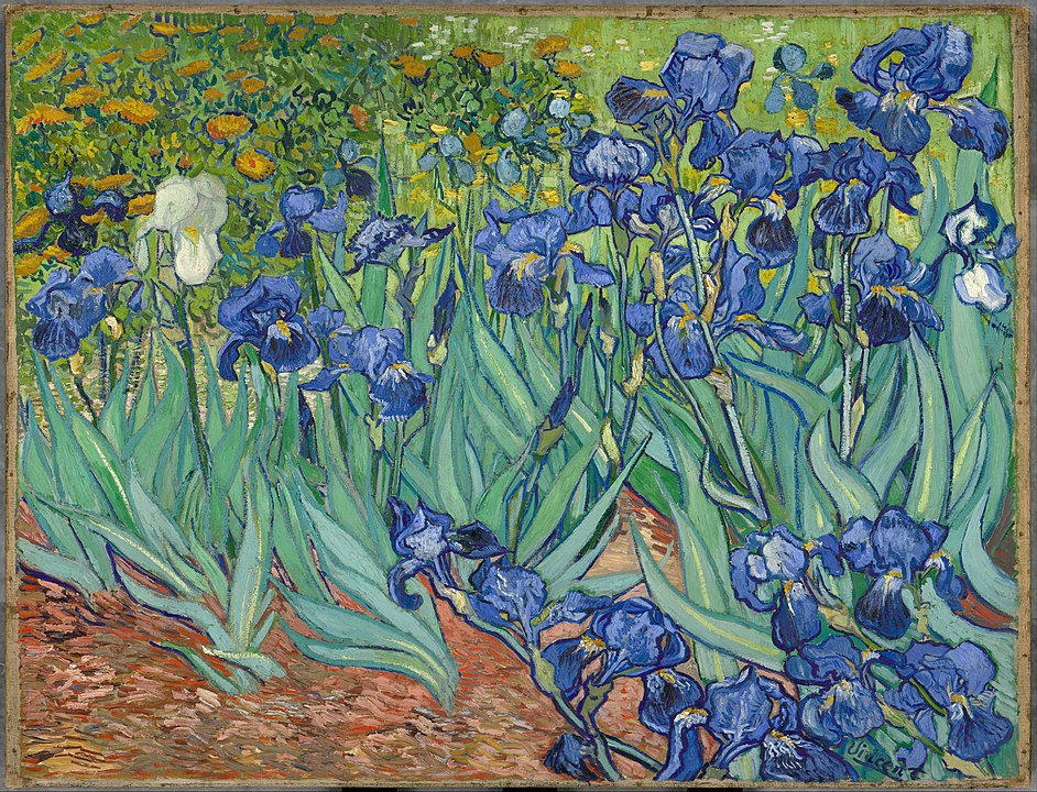 Irises by Van Gogh, a painting featuring brightly coloured blue and white flowers, with yellow flowers in the background.