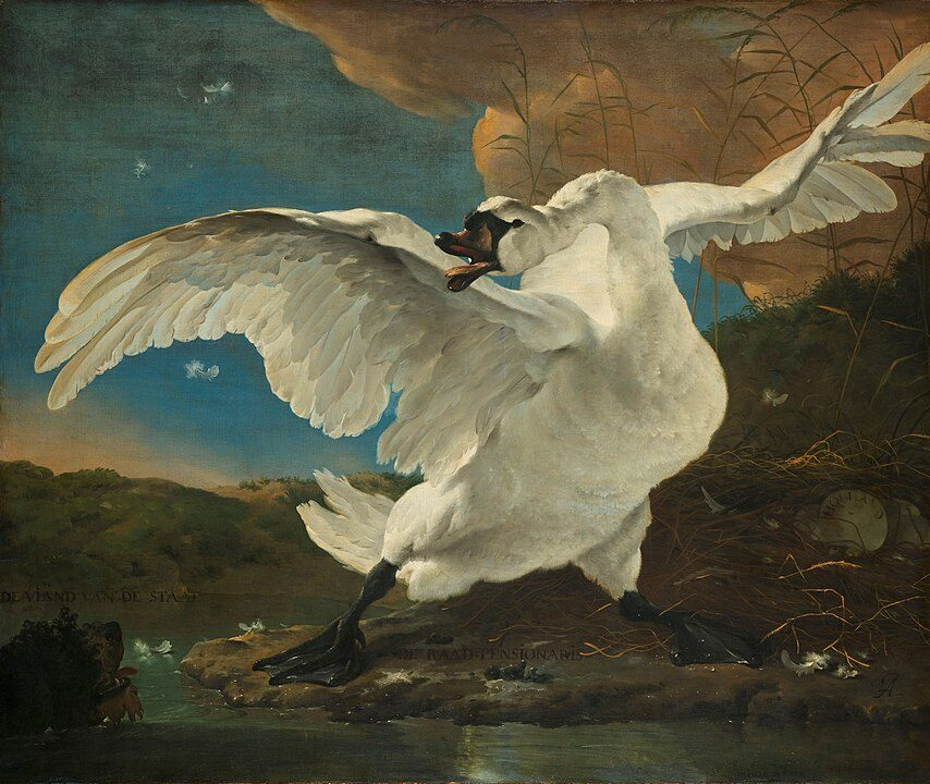 This famous bird painting by Jan Asselijn depicts a large white swan ferociously defending its nest from a dog.