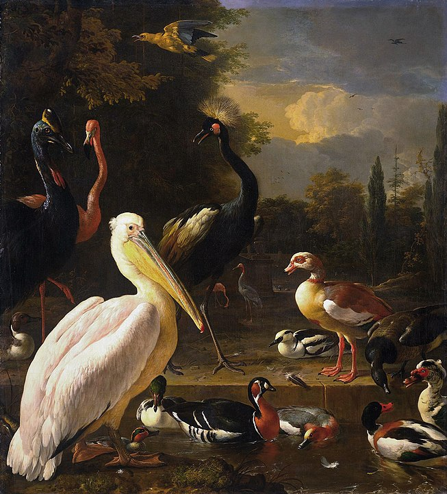 A painting of birds by Melchior de Hondecoeter, featuring a wide range of different varieties all congregating together.