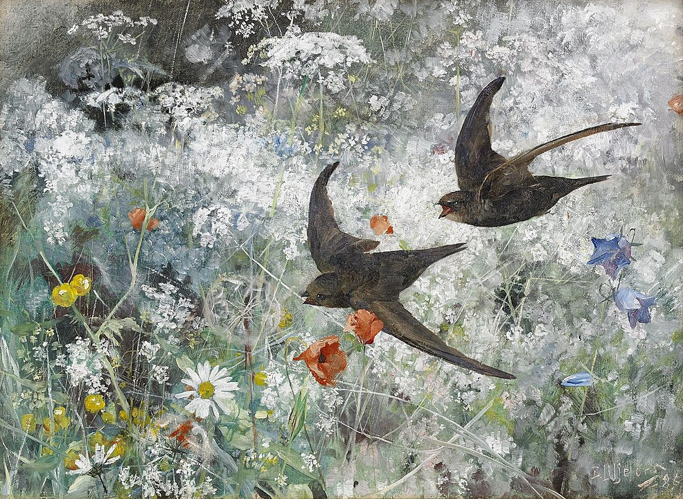A painting by Bruno Liljefors featuring two common swifts flying over a colourful garden.