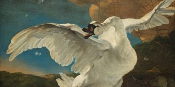 Famous Bird Paintings: Floating Feathers & Vicious Swans