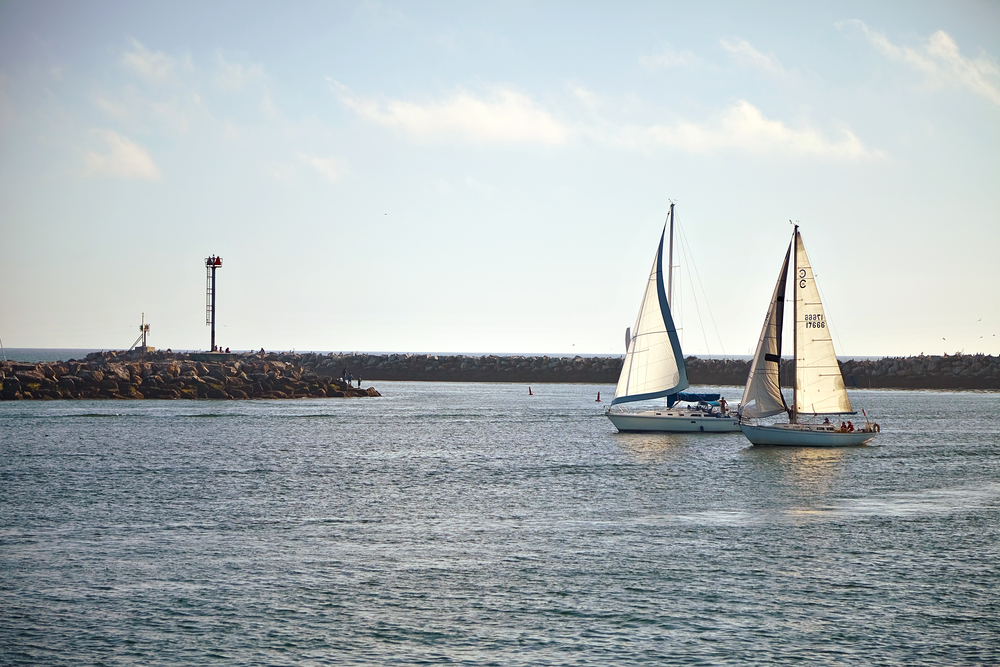 Two sailing boats cruising around Los Angeles.