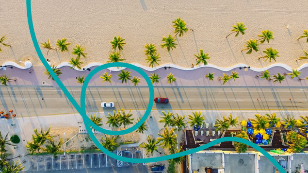 Aerial view of cars driving beside a palm-tree lined beach in Miami