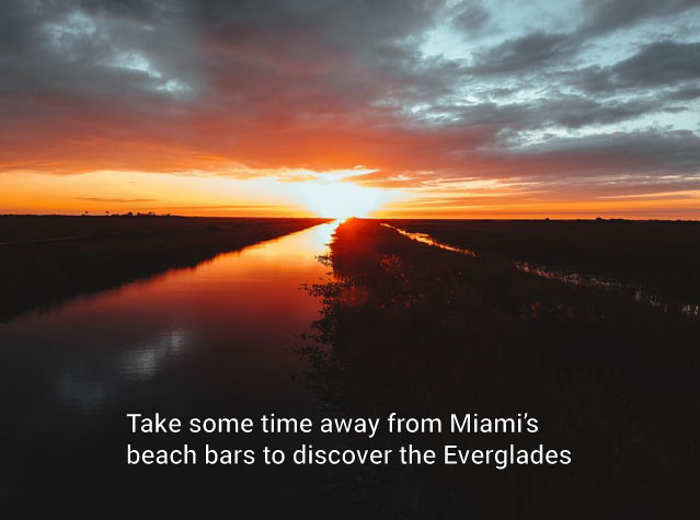 Drone shot of Florida's Everglades at sunset