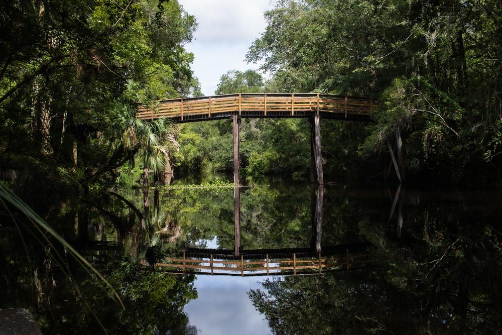 A bridge at Hillsborough River State Park