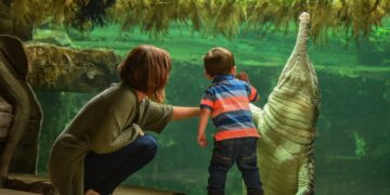 There's something for everyone at Chester Zoo